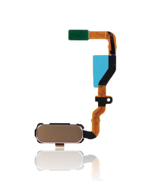 Samsung Galaxy S7 Home Button Flex Cable Replacement in Gold
